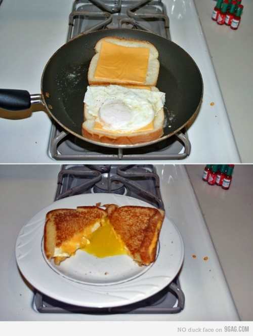 Grilled cheese fried egg sandwich