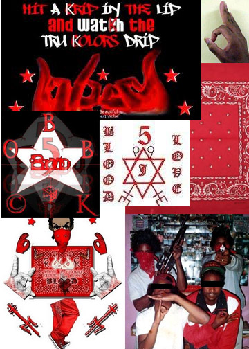The gallery for --> Street Gangs Bloods