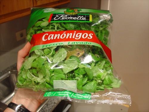 Mmmm fresh salad