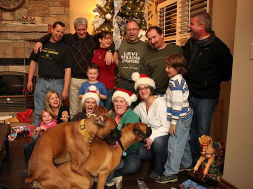 Source Duckduckgrayduckfileswordpress Report Funny Christmas Card Photos Kids
