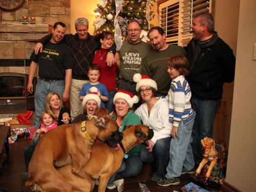 Christmas photo ruined