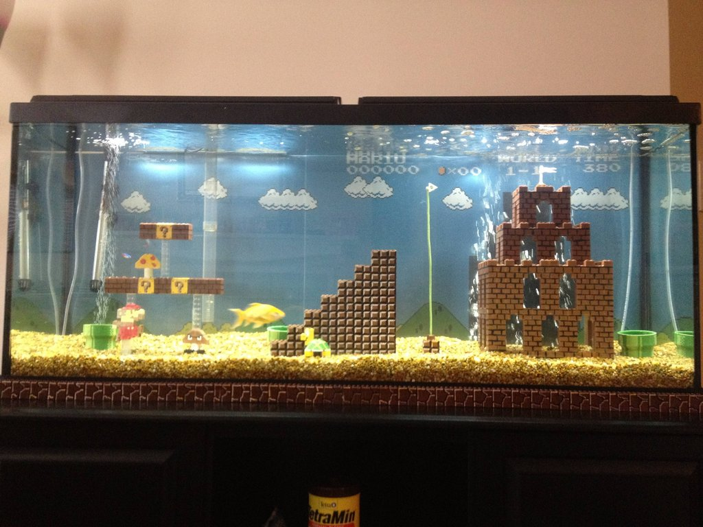 Super Mario Fish Aquarium Duck Duck Gray Duck