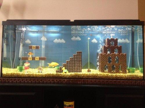Super Mario Fish Aquarium