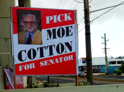 moe cotton for senator