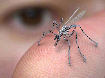 Drone or mosquito