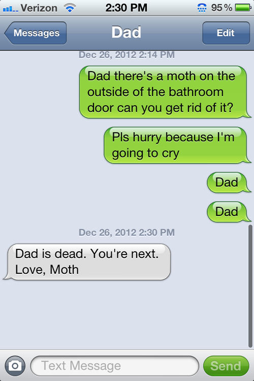 Beware of the moth