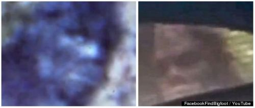 Two alleged Bigfoot creatures, from 1967 (left) and 2012 (right) -- a face only a mother Bigfoot could love.