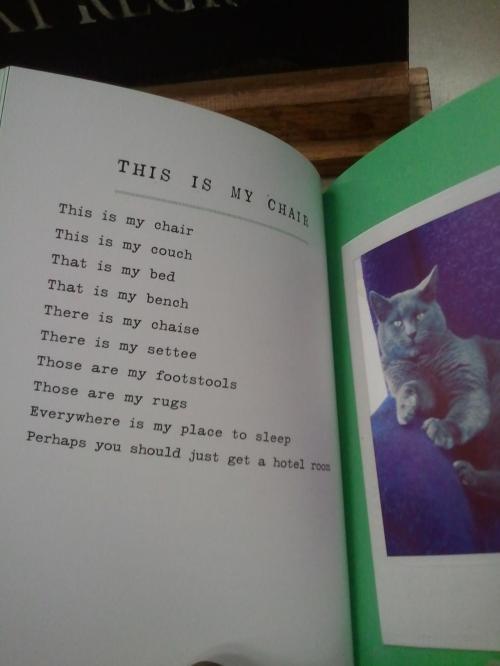 cat poems 3