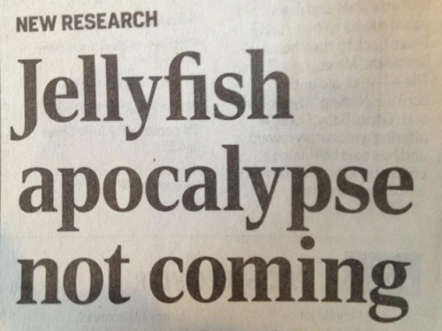 Reassuring Headline Of The Day