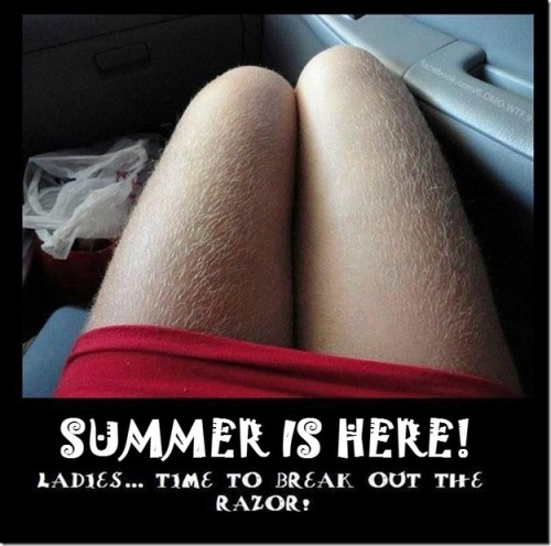 summer-is-here_small