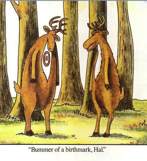 bummerbirthmark