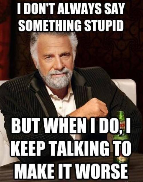 I-dont-always-say-something-stupid