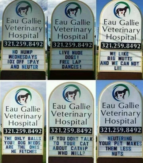 Eau Gallie Veterinary Hospital