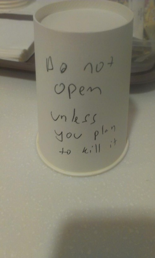 cup prank