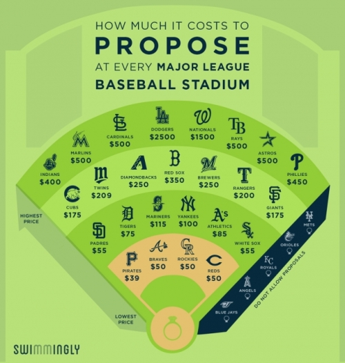 small_how_much_does_it_cost_to_get_engaged_at_a_baseball_game