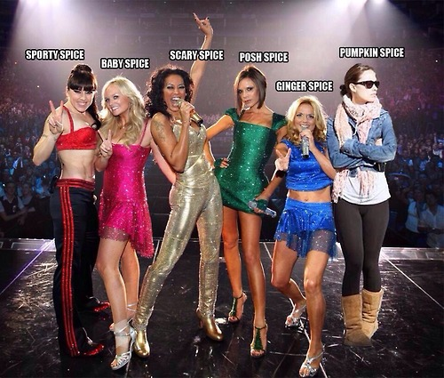 New Spice Girl Member