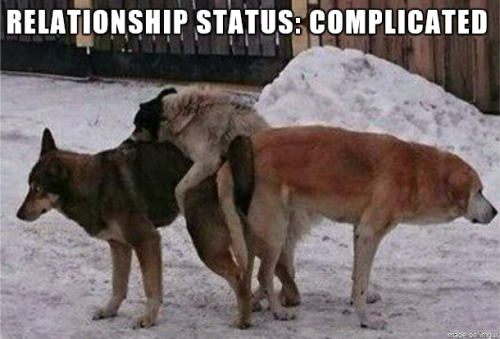 Relationship Status: Complicated