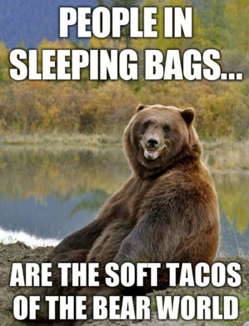 Bear Sleeping Bags