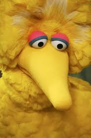 big bird sad