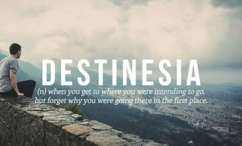 destinsia