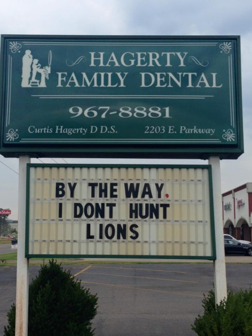 dentist hunting lions