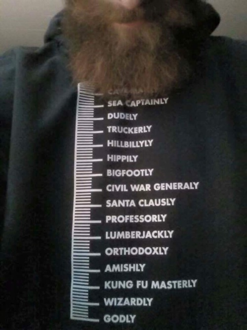Definitive beard guide