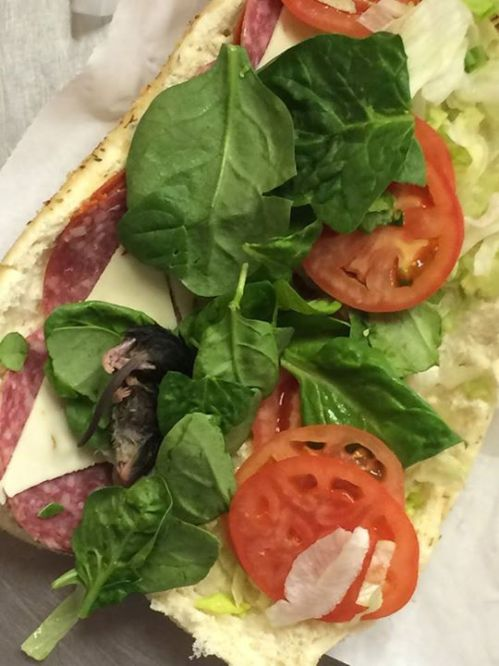 Man finds dead mouse in his Subway sandwich and snaps photo
