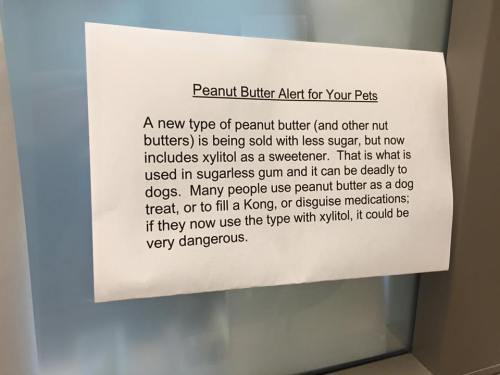 peanut butter alert for dogs