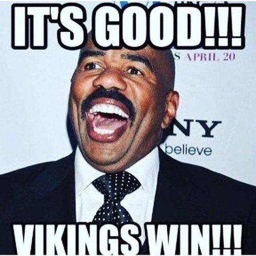 Minnesota Vikings Steve Harvey