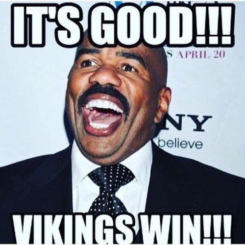Minnesota Vikings Steve Harvey