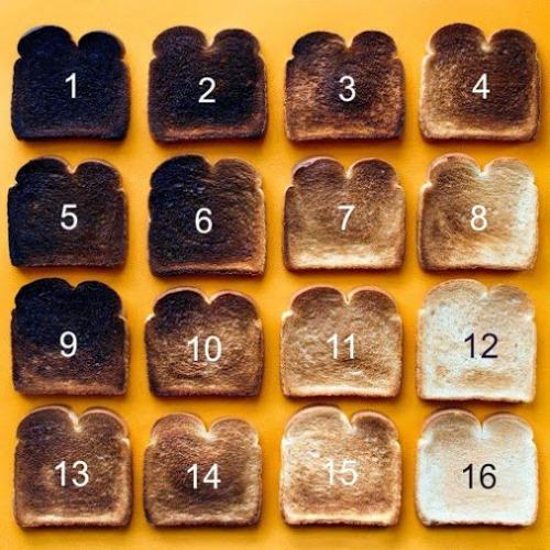 toast shades